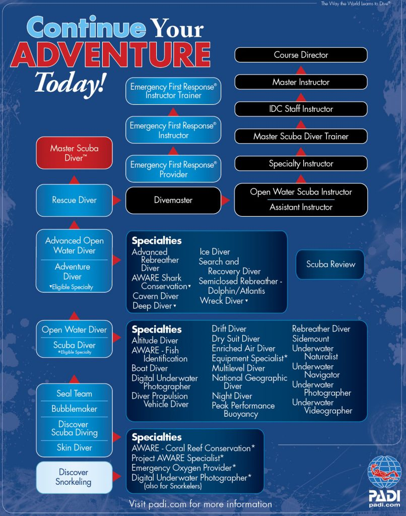padi education flow chart