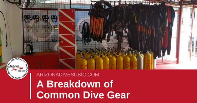 A Breakdown of Common Dive Gear