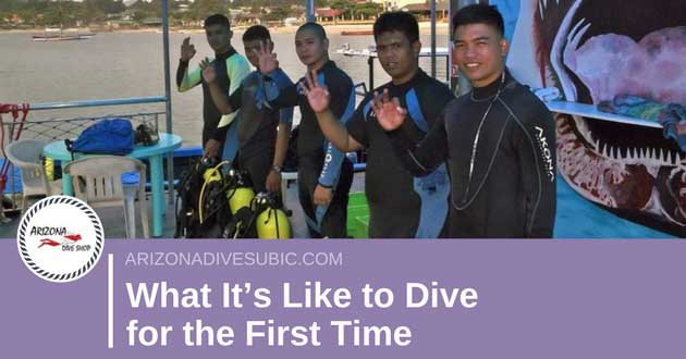 What It's Like to Dive for the First Time